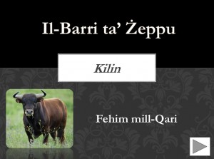 Il-Barri ta Zeppu