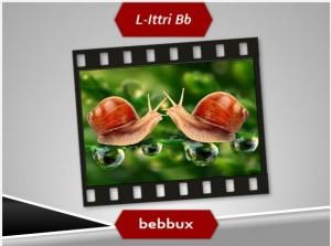 Il-B_1