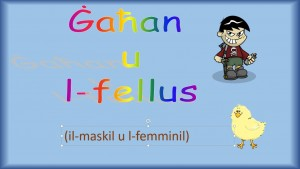 gahan-u-l-fellus-maskil-u-femminil