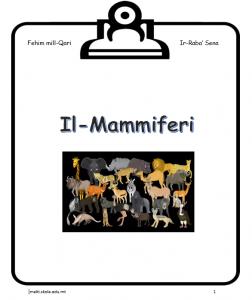 Il-Mammiferi