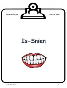 Is-Snien