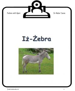 Iz-Zebra