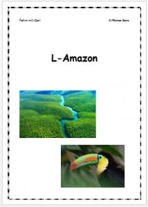 L-Amazon